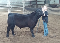 Agribition '06